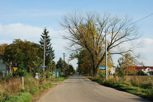 Road into Falenty